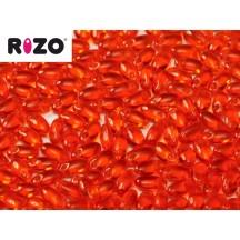 Rizo 90020 Hyacinth