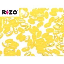 Rizo 81210/28701 Lime AB